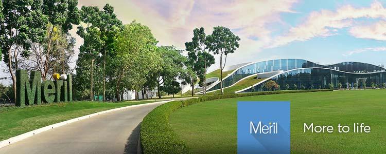 Meril Life Sciences | Compañía representada por World Medica